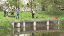 Brandweer redt vier jonge eendjes uit afwateringssysteem in Roosendaal