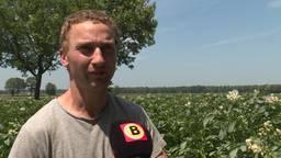 Boer Paul Horevoorts uit Alphen sprayt zonnebrand om zijn aardappels te beschermen tegen de zon