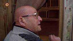 Duivenmelker Jan Bullens zat er helemaal doorheen na de diefstal van zijn duiven.