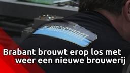 Proost: Brabant brouwt erop los met weer een nieuwe brouwerij