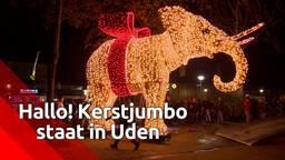 Geen enorme kerstboom, maar joekel van een kerstolifant in Uden
