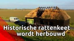 Door brand verwoeste historische rattenkeet in de Biesbosch wordt herbouwd