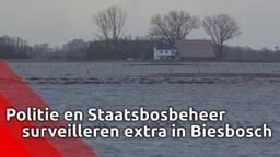 Politie en Staatsbosbeheer surveilleren extra in Biesbosch om gevluchte dieren te beschermen