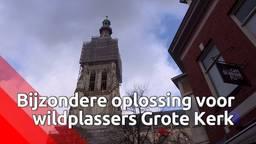 Wildplassende feestgangers in Breda worden op ludieke wijze gestraft