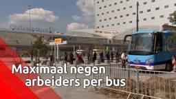 Er mogen maar negen arbeiders in één bus.