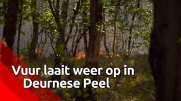 Brand in Deurnese Peel grootste natuurbrand ooit en is nog lang niet uit