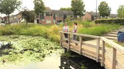 Anne laat de amfibieënkenner de kikkervijver voor haar huis zien
