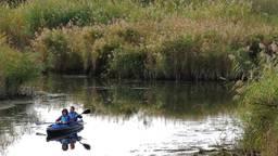 Vier klassieke openluchtconcerten op drijvend podium midden in Nationaal Park de Biesbosch in 2021