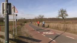 Verzet tegen rondweg in buitengebied bij Den Hout: 'Het is de doodsteek voor ons dorp'