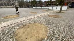 Kaalslag op Parade in Den Bosch: alle kastanjes worden gekapt