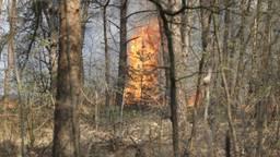 Grote heidebrand Rucphense Bossen onder controle