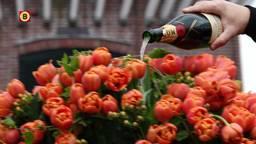 Guus Meeuwis heeft eigen tulp in Keukenhof