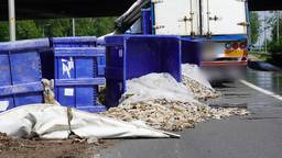 Verloren slachtafval op de A27 bij Oosterhout zorgt voor veel stankoverlast