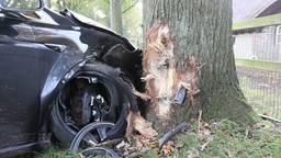 Tesla belandt tegen boom in Cromvoirt.
