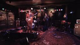 Bergen op Zoom eert Jimi Hendrix
