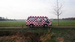 Brabants Buske