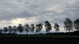Een onstuimige ochtend in Budel (foto: Ben Saanen)