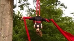 Anne traint aerial silk in een boom vlakbij huis.