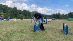 In Roosendaal is de eerste hondenspeelplaats van Brabant