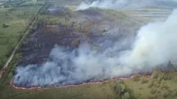 Brand bij de Deurnese Peel in 2017. (Foto: Ivo van der Put / YouTube)