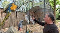 Zoo Veldhoven (foto: Ilse Schoenmakers)