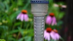 Op sommige plekken valt meer regen dan normaal in een hele julimaand (foto: Ben Saanen).