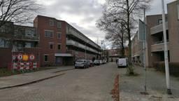 De Rentmeesterlaan in Tilburg (foto: Ista van Galen).