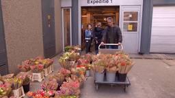 Bloemen voor het Catharina ziekenhuis