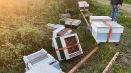 Omgegooide bijenkasten (foto: Rhoxana Ynema).