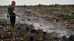 Stijn blust een rokend gedeelte op de Peel (foto: Alice van der Plas).