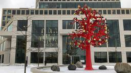 Rechtbank in Breda in de sneeuw (foto: Willem-Jan Joachems).