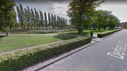 Het Westerpark in Den Bosch (afbeelding: Google Streetview).