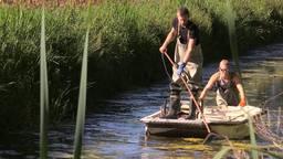 Jan-Peter en Martijn scheppen de vissen uit de beek (foto: Tessel Linders).