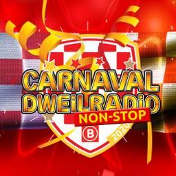 Non-stop de allerleukste carnavalsliedjes. Het is dus continu feest!