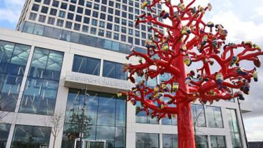 De rechtbank in Breda. (Archieffoto: Karin Kamp)