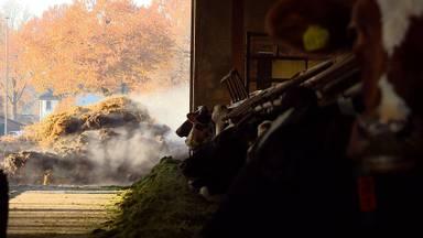 Mest is een waardevolle grondstof, zegt het Centrum voor Mestverwaarding in Middelbeers.