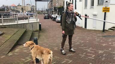 In Steenbergen lijkt Mark Rutte onverminderd populair. Maar een van zijn grootste criticasters kan ook wat steun genieten.