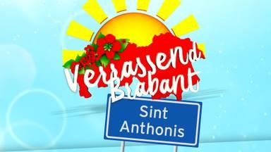 #VerrassendBrabant sint Anthonis