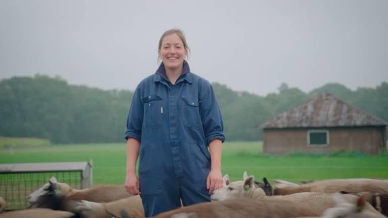 Veearts Rianne tussen de schapen.