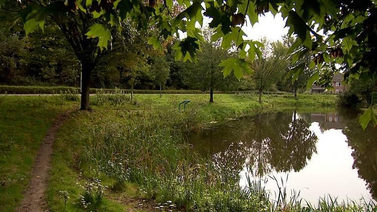 De plek waar de vrouw werd aangevallen in Roosendaal (Beeld: Politie / Opsporing Verzocht).