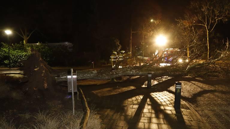 Ook in Cuijk was het raak (foto: SK-Media / SQ Vision).