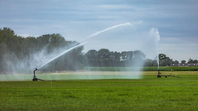 Sproeien is in de meeste delen van het beheergebied van Waterschap De Dommel even niet toegestaan.