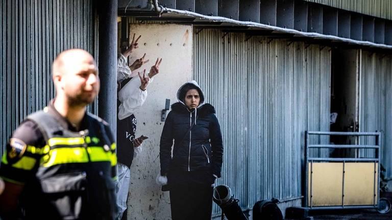 De activisten drongen op 13 mei 2019 de stal in Boxtel binnen(foto: archief).