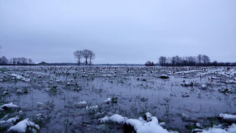 Het was mooi wakker worden in het zuidoosten van Brabant (foto: Ben Saanen).