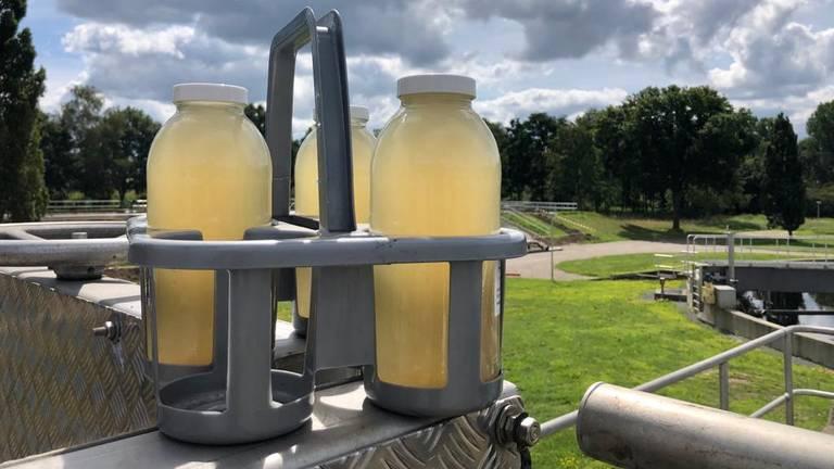 De flessen met afvalwater gaan voor onderzoek naar het lab van het RIVM. (Foto: Erik Peeters)