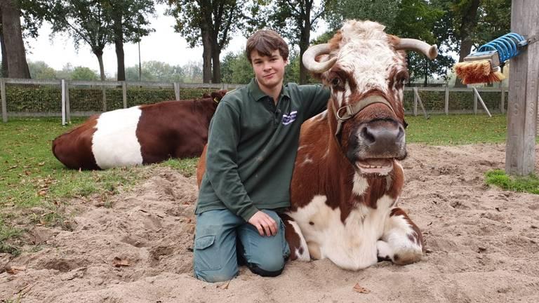 Siem tussen de dieren op kinderboerderij Wolfslaar in Breda