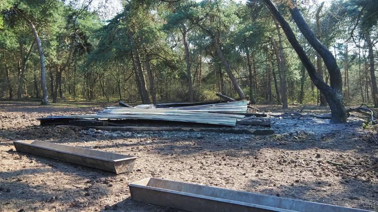 Een 25-jarige man uit Eemnes is aangehouden vanwege de brand in safaripark Beekse Bergen eind maart (foto: Toby de Kort/SQ Vision).