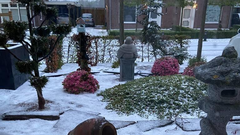 Sprookjesachtig wakker worden in Eerde (foto: Hella van der Zanden).