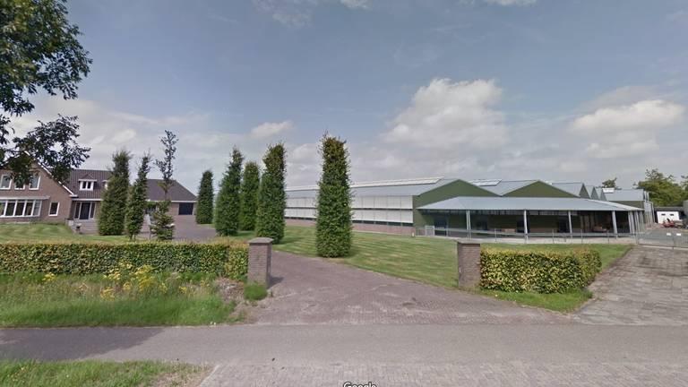 Het bedrijf van nertsenhouder Martijn van den Boogaard uit Beek en Donk (Beeld: Google Maps)