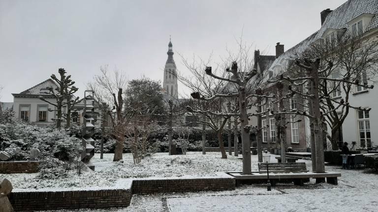 De Willem Merkxtuin in Breda met op de achtergrond de Grote Kerk (foto: InfoBreda/Bart Winkel).